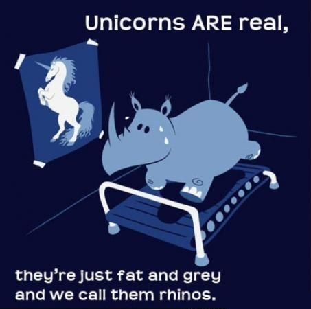 Unicorns cartoon